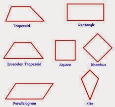 quadrilateral-tetrapleyro